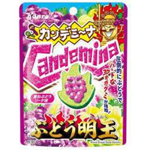 カンロ カンデミーナグミ ぶどう明王40g【12/06 新商品】